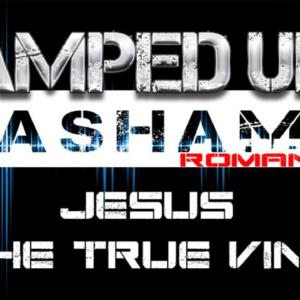 The Amped Up Life: Jesus The True Vine