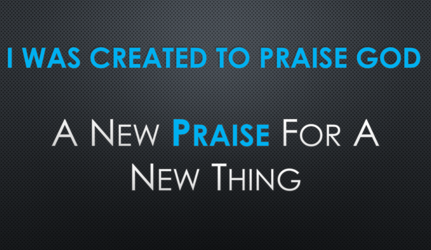 Summer Days of Praise: I Was Created To Praise God
