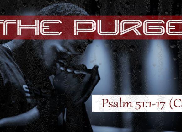 Settle Down: Purge – Part 2